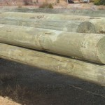 Pilings (1.0# Treatment)